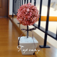 Topiary Pink:トピアリー ピンク